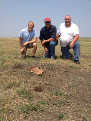 Prairie Dog Hunting in Dakota