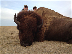 South Dakota Buffalo Hunting with Jim River Guide Service